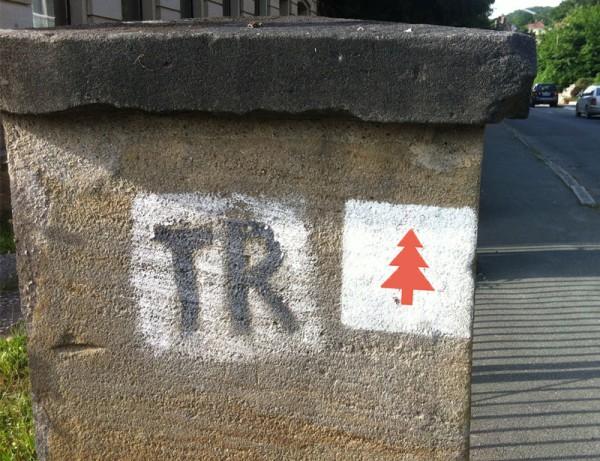 1931 wurde der heute durch eine rote Tanne auf weißem Grund markierte Weg durch den damaligen Ortsverschönerungsverein unter Vorsitz von Georg Glimpf angelegt. Spannendes Detail: an manchen Stellen kann man mit dem Thiesenring selbst noch in die Vergangenheit blicken, indem man die alte TR-Markierung (schwarzes TR auf weißem Grund) entdeckt.